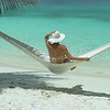 0023 slow motion video of a woman relaxing in hammock on perfect tropical beach