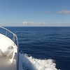 0075 slow motion calm open blue water viewed from boat in virgin Islands