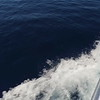 0076 slow motion calm open blue water viewed from boat in virgin Islands