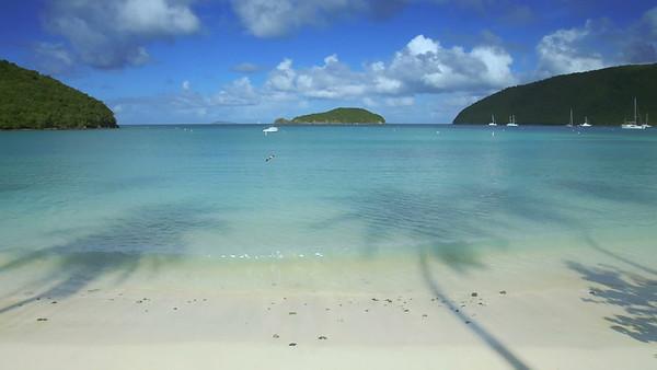 V0002 slow motion tropical shoreline with palm shadows,