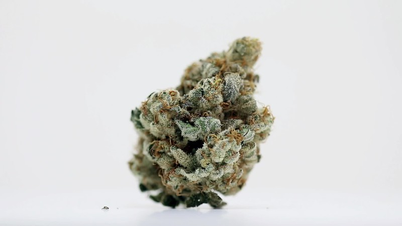 Frosty Bud Spinning on White