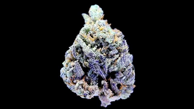 Purple Bud Spinning on Black