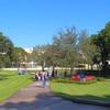 Florida International University stock video