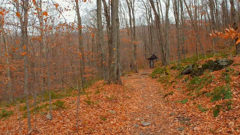 Catskill Mountains hiking trail