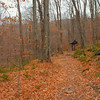 Catskill Mountains hiking trail