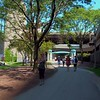 Chicago Riverwalk ground motion video