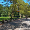Scenic Central Park NY in the summer