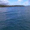 Aerial video orbiting around surfers in Oahu Hawaii