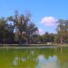 4k video Lincoln Memorial Reflecting Pool