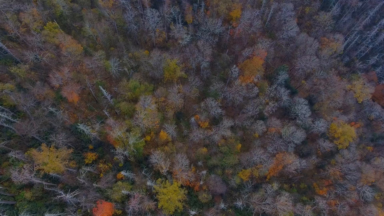 Aerial drone footage Smokey Mountains 4k
