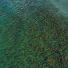 Aerial drone video Florida reefs 4k 60p