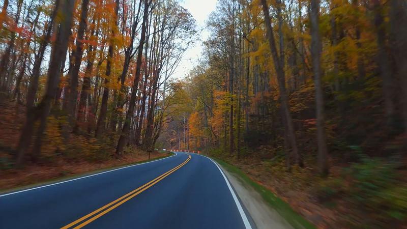 Driving through the Smokey Mountains