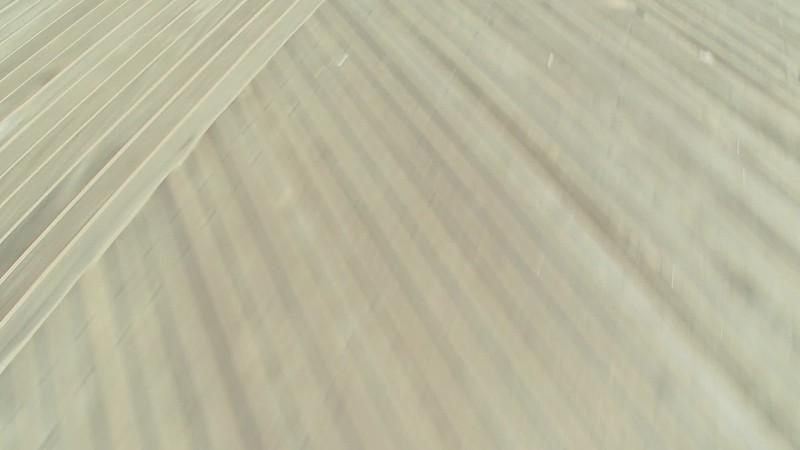 Blurry boardwalk background