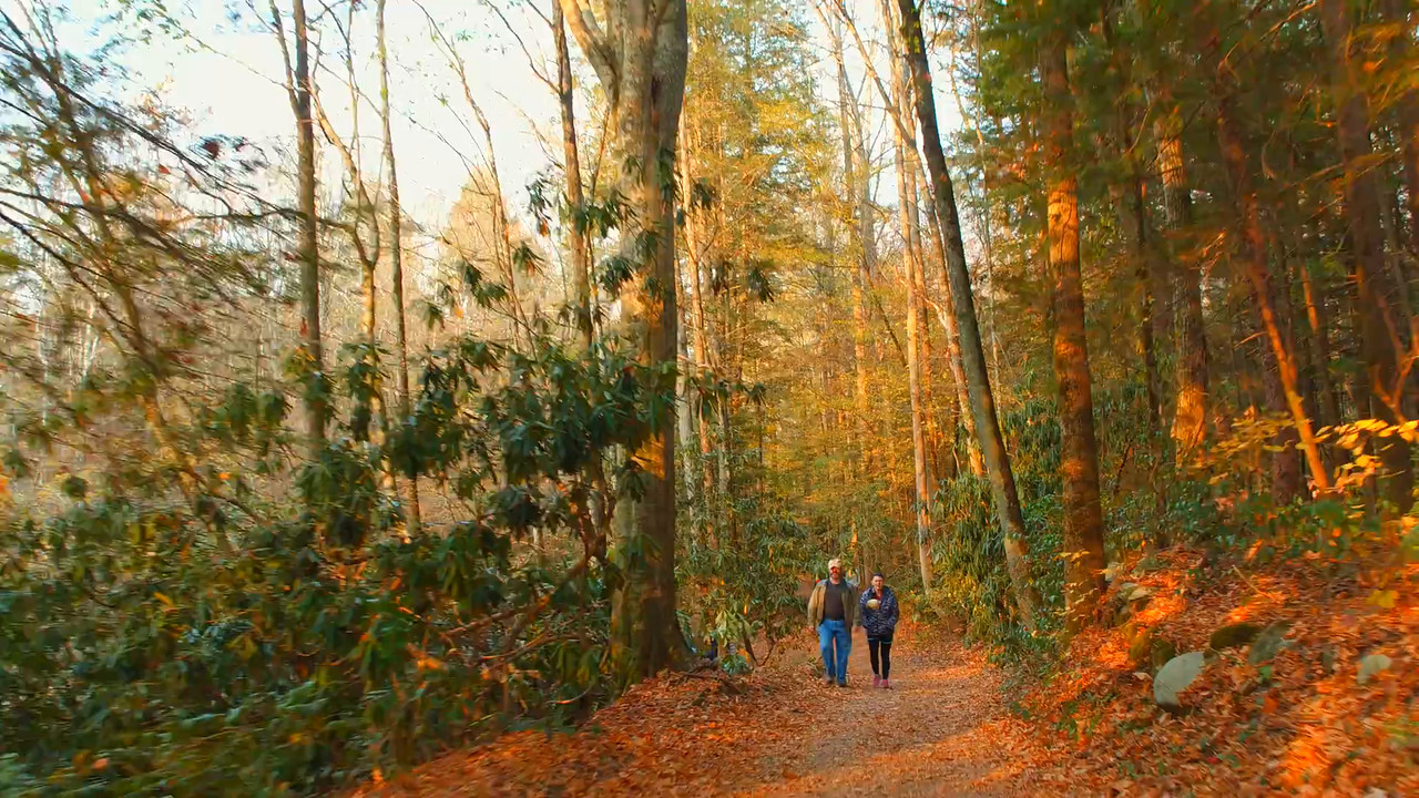 People exploring the Appalachian Trails