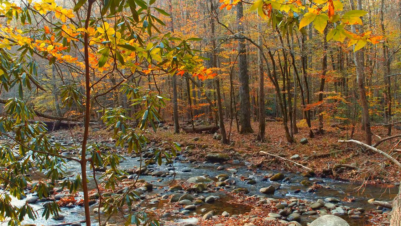 River at the Appalachian Trail