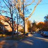 Upscale residential neighborhood Toronto Canada
