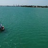 Stock aerial footage sail boats Miami Beach