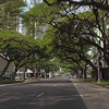 Highrise buildings on Kapiolani Boulevard Honolulu Hawaii 4k