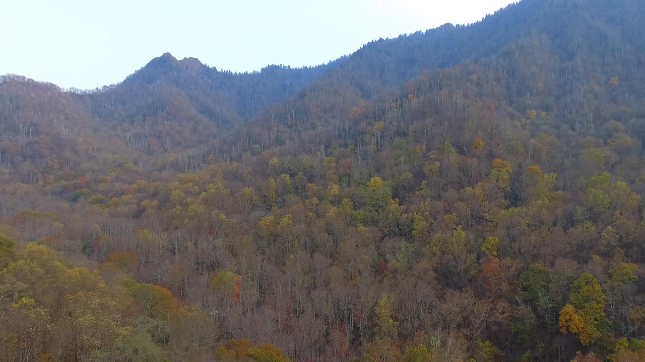 Aerial video Smokey Mountains Tennessee