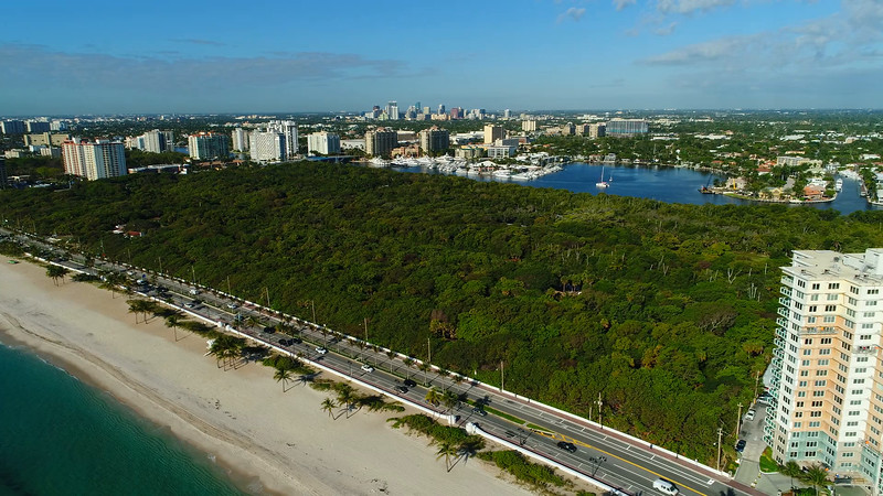 Stock video of Hugh Taylor Birch State Park Fort Lauderdale