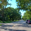 Motion video drivers point of view Evanston Chicago