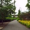 Stock motion footage Paul Revere Park Boston 4k