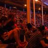 Sea lion show Seaworld Orlando