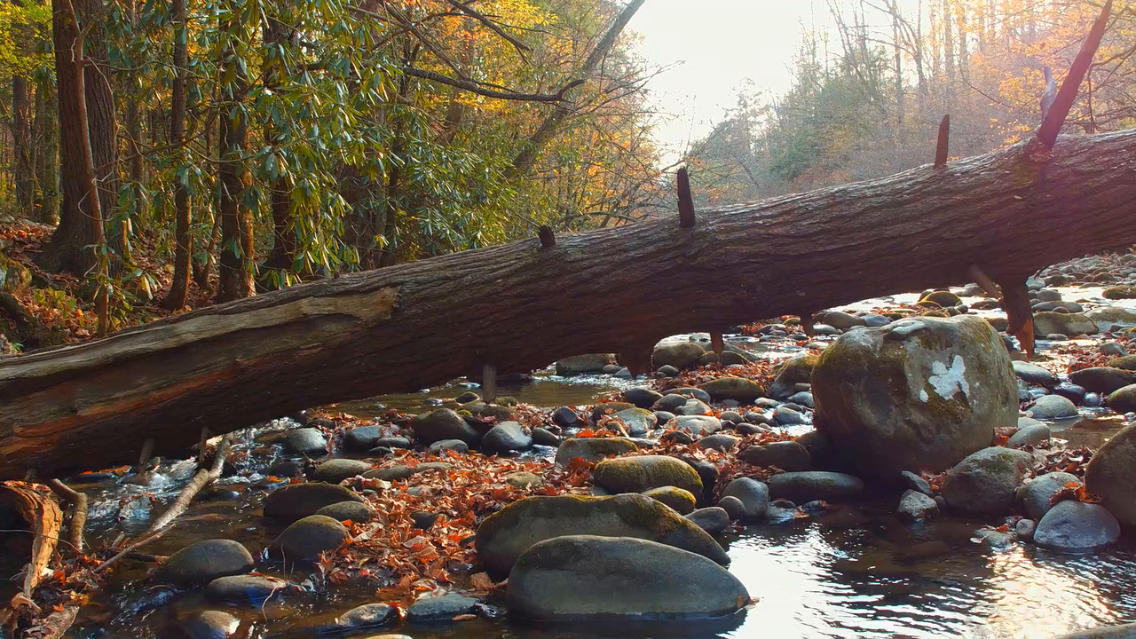 River at the Appalachian Trail slider video