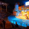 Sea lion show Seaworld