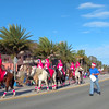 Horses in the St Augustine winter Parade