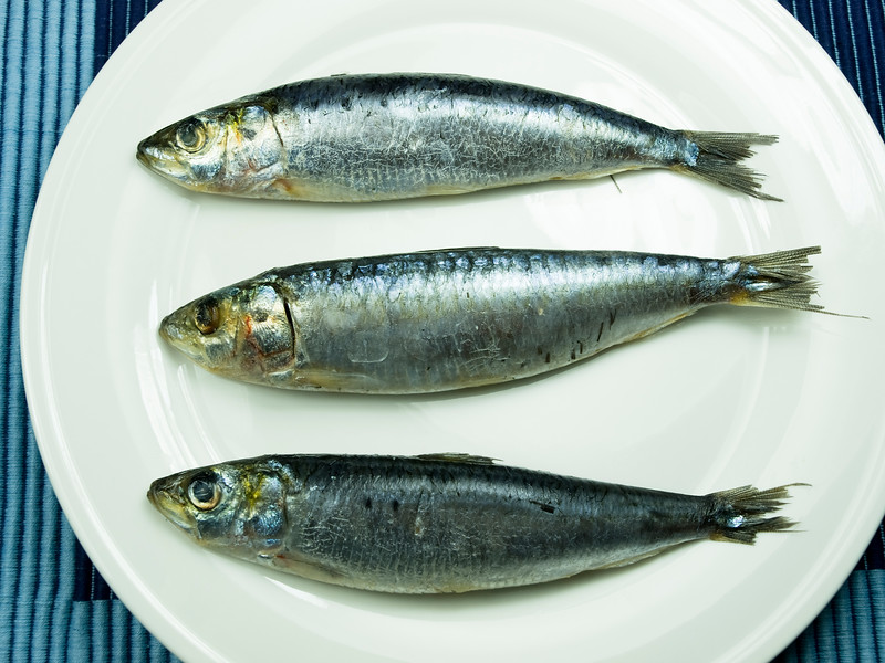 three sardine on a white plate