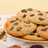 Butter cookie with chocolate chip in a plate. Very shallow depth of field.
