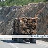 [016] Logging truck