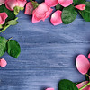 Beautiful pink petals of roses on color wooden background
