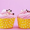 Two sweet cupcake with chocolate balls isolated on a pink background