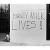 Harvey Milk lives grafitti on Castro Street, May 22, 1978