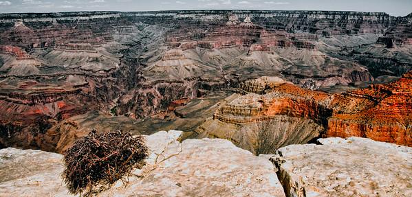 grand canyon-8