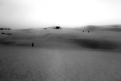 sand dune-22