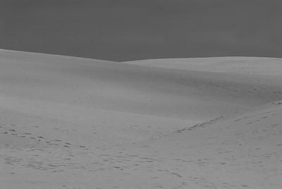 sand dune-6