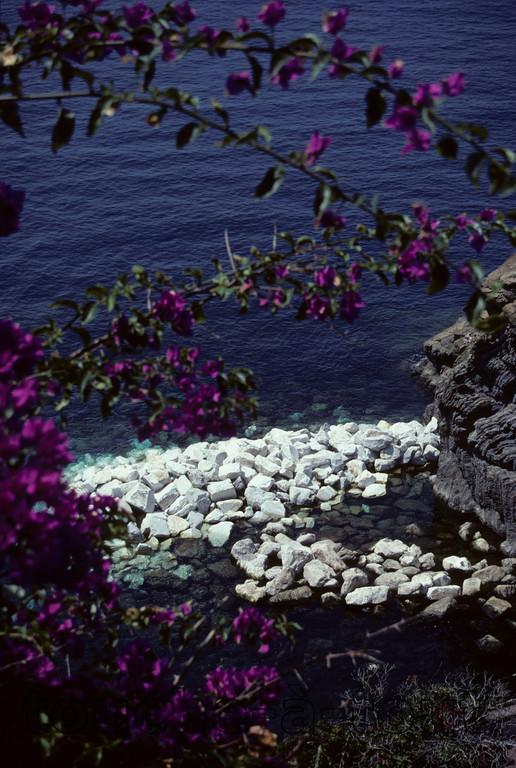 Coast off Cinque Terre