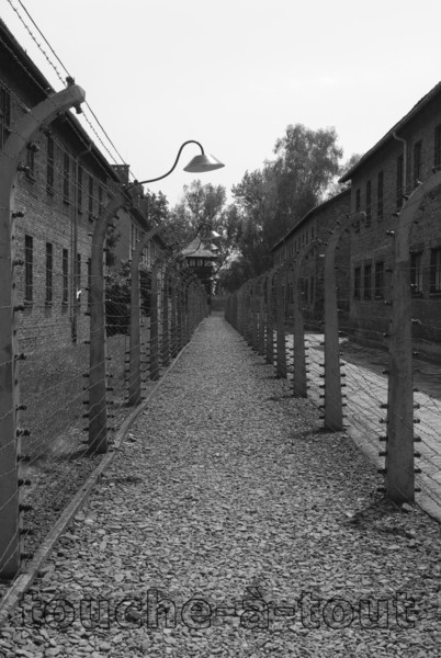 Barbed wire fence at Auschwitz death camp, Poland