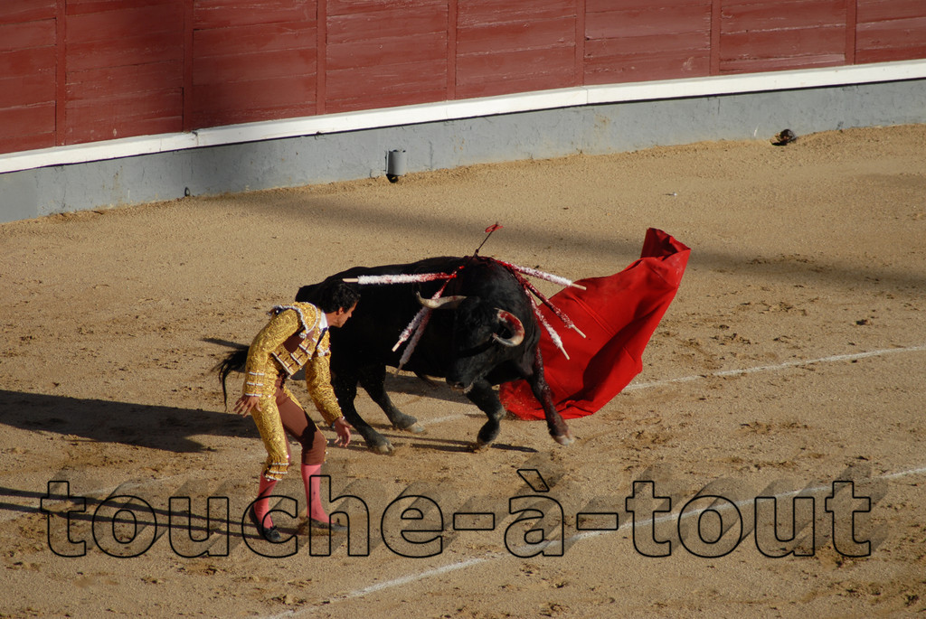 Bullfighting at Las Ventas, Madrid