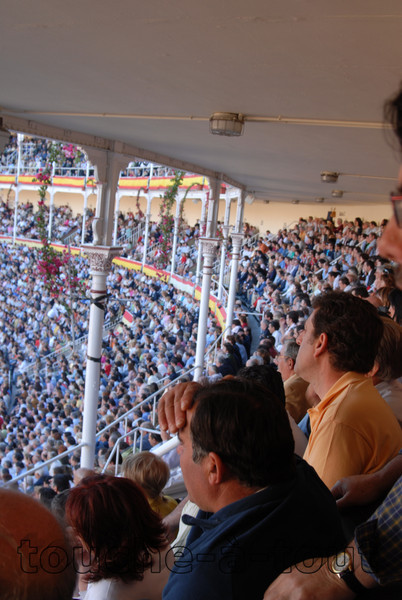 Watching bullfighting, Las Ventas, Madrid