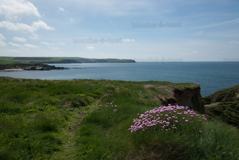 Looking towards Hope Cove