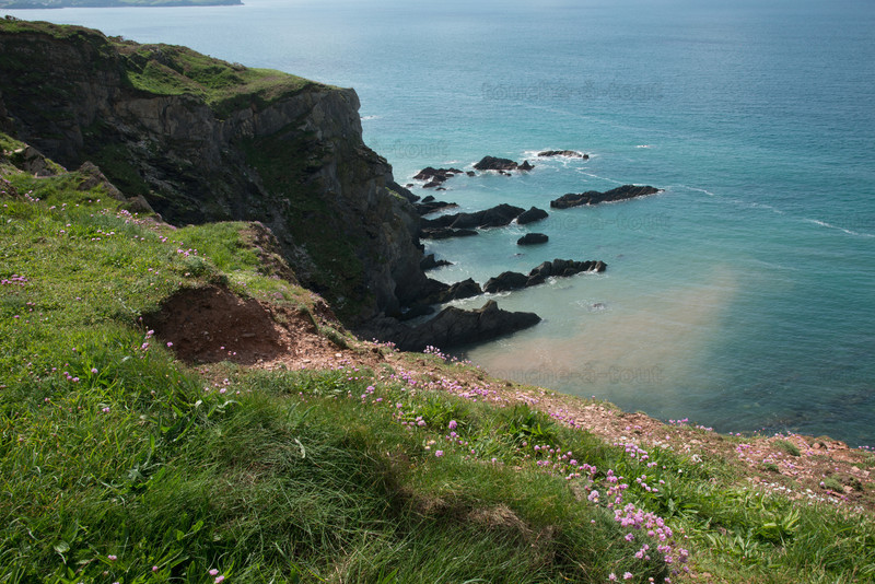 The south west coastal path between Bantham and Thurlestone
