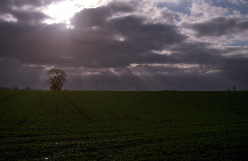 Looking towards South Dalton spire, East Riding of Yorkshire