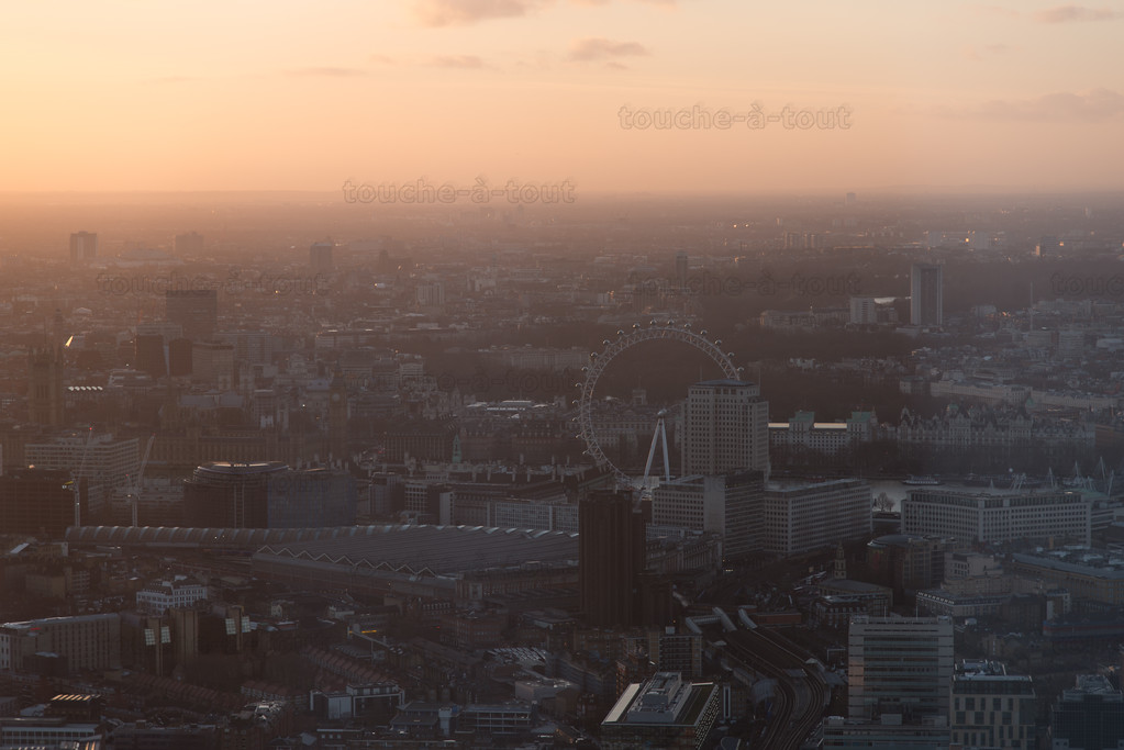 Westminster from the Shard
