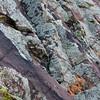 Sandstone rock with lichen background