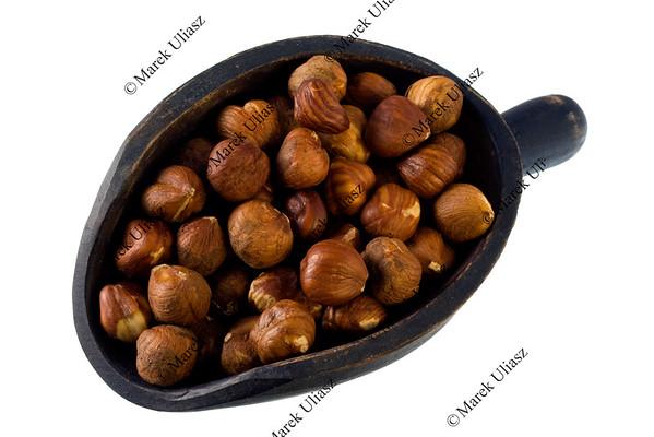 scoop of filberts (hazelnuts)