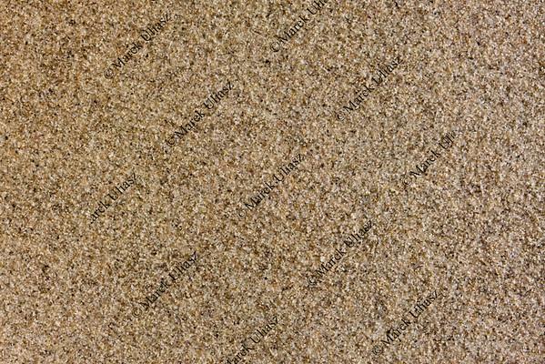 Great Sand Dunes Natioanl Park - ground surface background